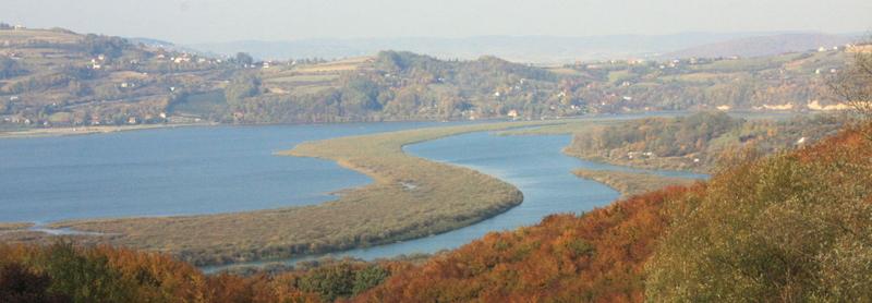 Jezioro Rożnowskie w okolicy Tęgoborzy
